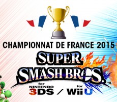 Championnat de France 2015 - Super Smash Bros - Lille Grand Palais